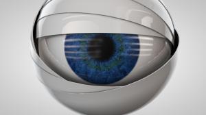 eye (0-00-14-11)